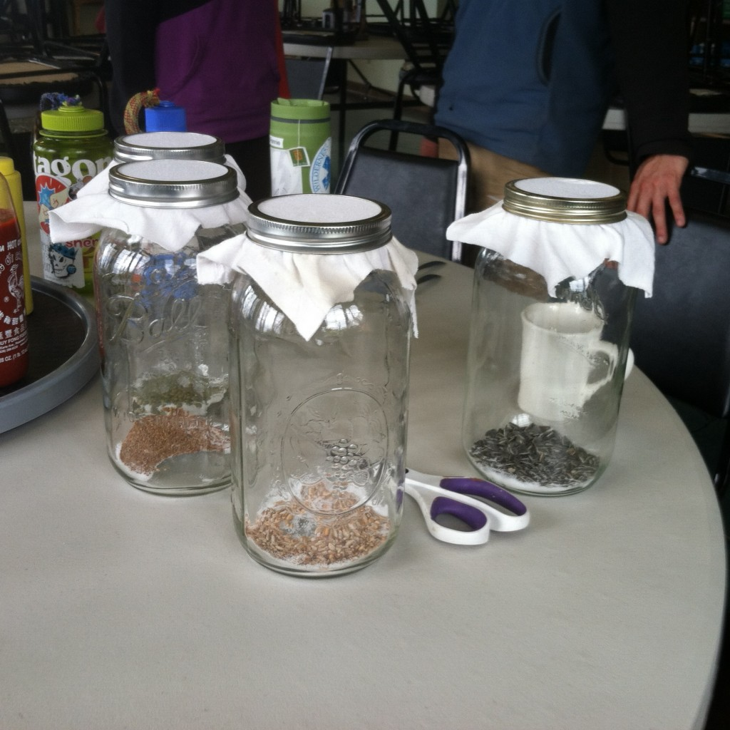 We used three tablespoons of seeds, three tablespoons of citric acid (a preservative), placed them in jars, and covered them with a screen (we used pieces of a tshirt).