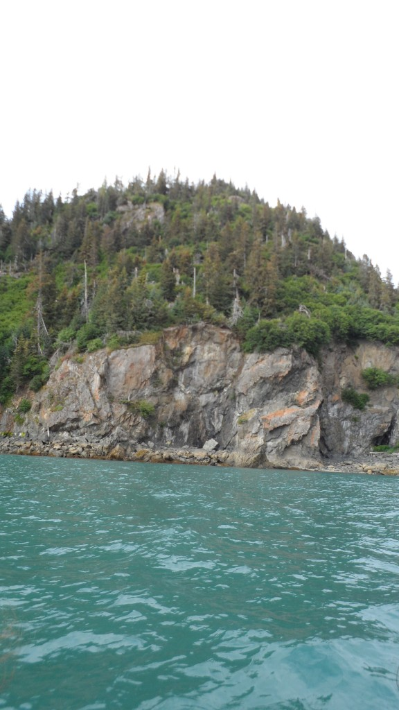 View from the umiak on the way to Glacier Spit/Tram trail