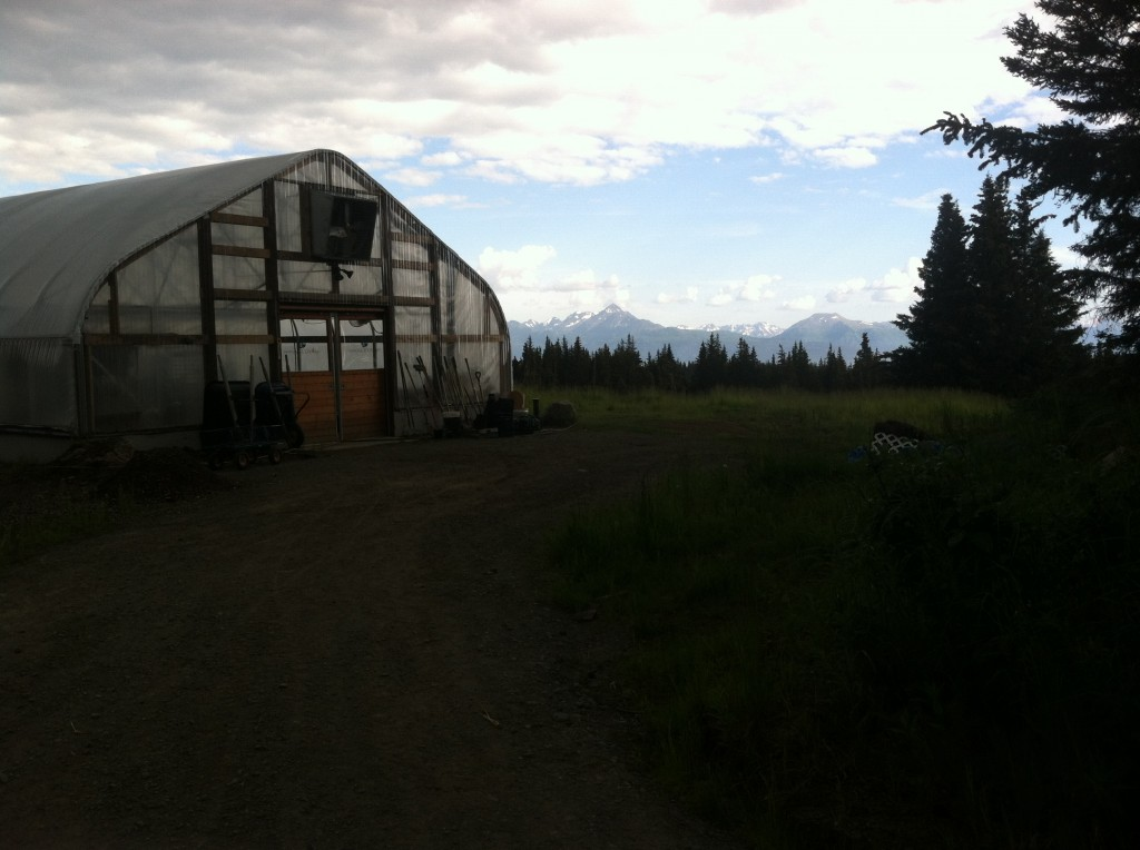 Greenhouse I'll be working in  and an amazing view